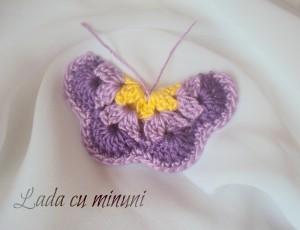 fluturele meu