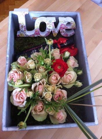 flori Cami