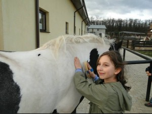 Păi, ce știi tu despre cai?