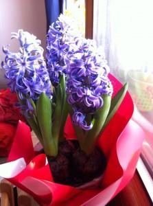 Ele-s primăvara mea